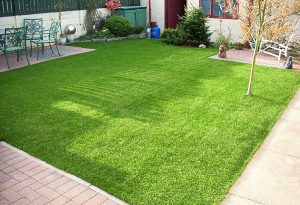 fake grass1