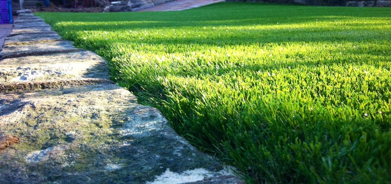 fake grass4